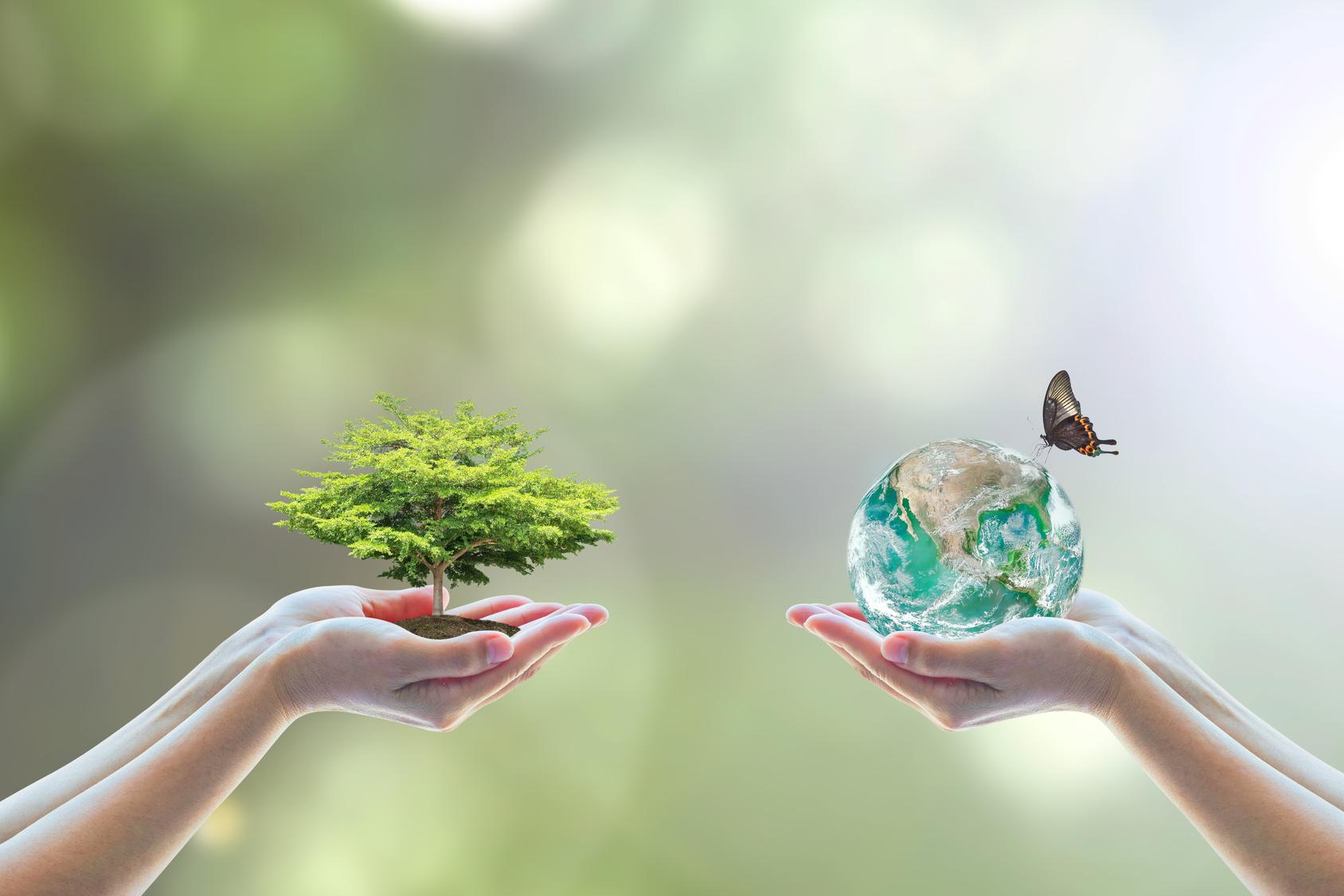 Zukunftstechnologien und nachhaltige Ressourcen