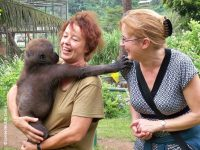 Gorilla Dr. Sandra Altherr, Biologin und Mitbegründerin Pro Wildlife e. V. in Limbe