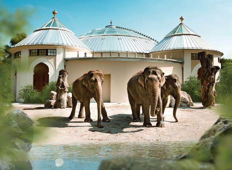 Elefantenhaus Tierpark Hellabrunn