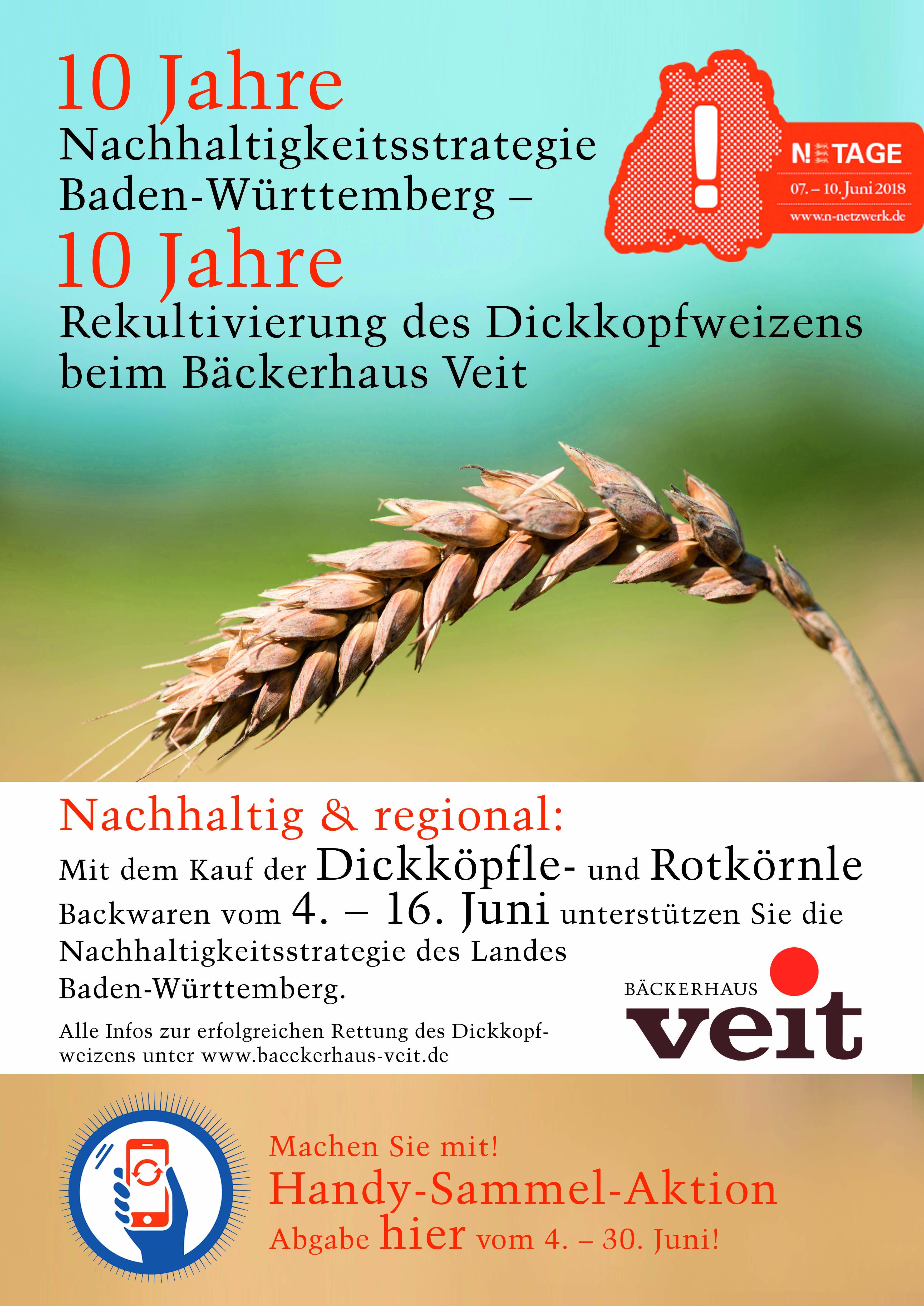 Plakat A1 Nachhaltigkeitstage